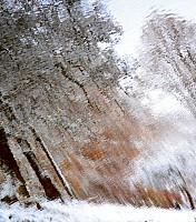 Schneeherbst 18 2012