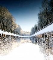 Schneeherbst 1 2012