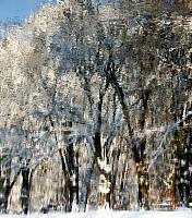 Schneeherbst 3 2012