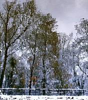 Schneeherbst 9 2012