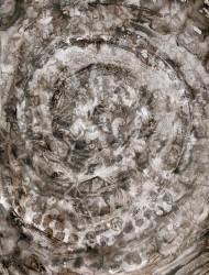 Wildwuchs 3 76x56 cm Tusche auf Papier 2018
